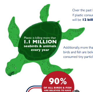 Single-use plastic infographic turtle